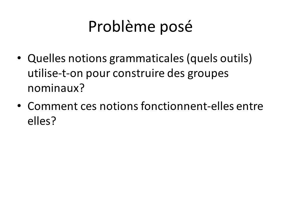 Problème posé Quelles notions grammaticales (quels outils) utilise-t-on pour construire des groupes nominaux? Comment ces notions fonctionnent-elles e