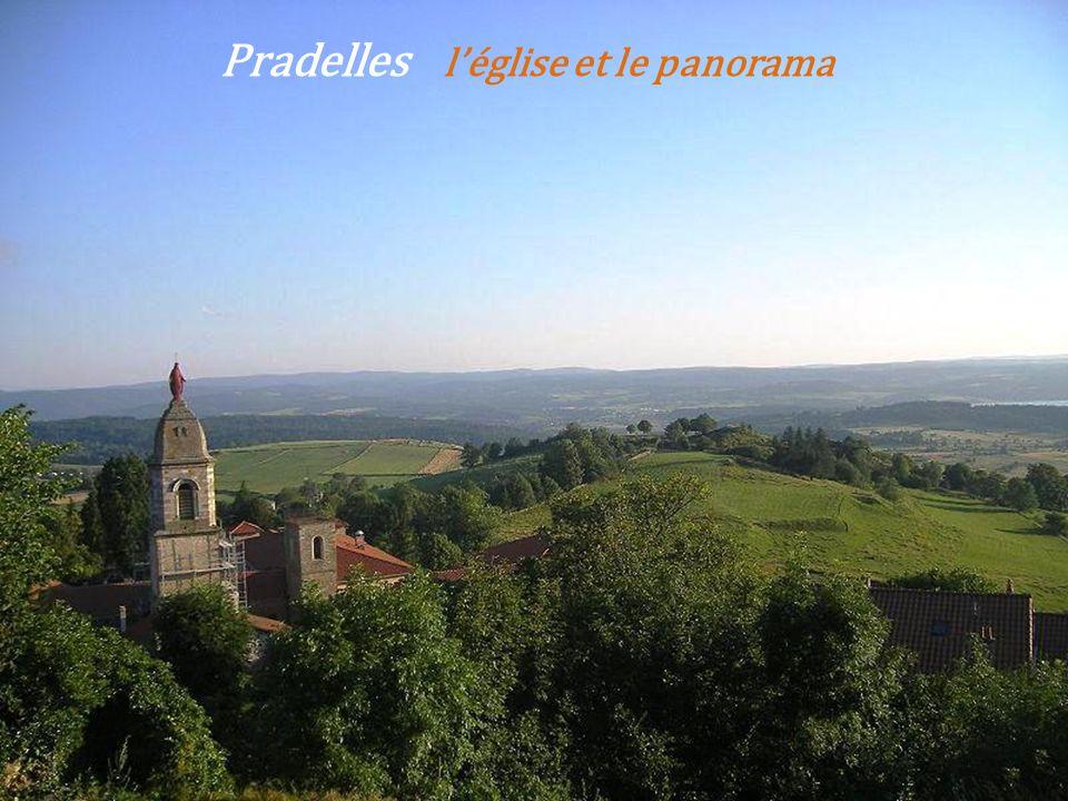 Arlempdes vue sur le village