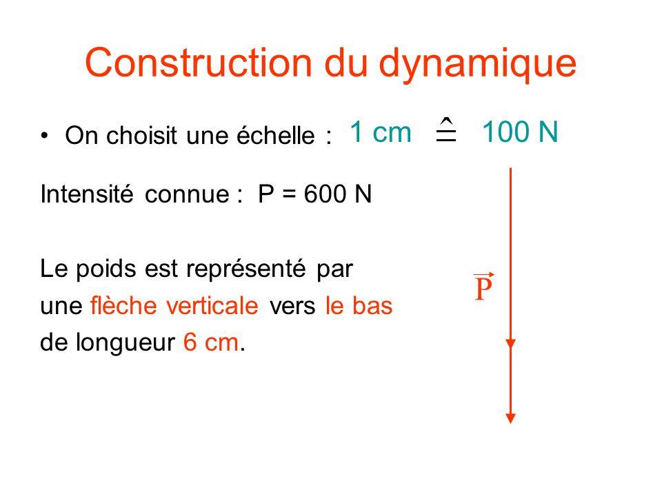 Construction du dynamique On choisit une échelle : Intensité connue : P = 600 N Le poids est représenté par une flèche verticale vers le bas de longueur 6 cm.