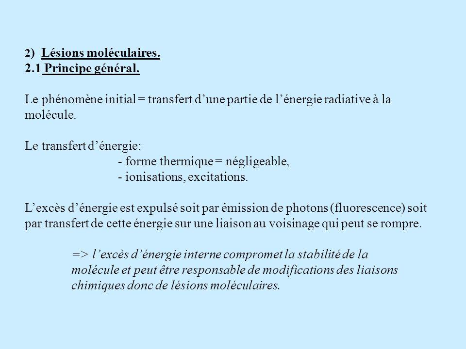 2 ) Lésions moléculaires. 2.1 Principe général. Le phénomène initial = transfert dune partie de lénergie radiative à la molécule. Le transfert dénergi