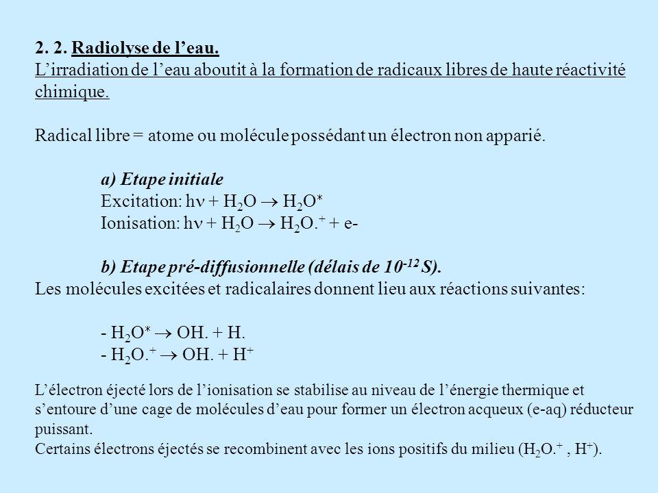 2. 2. Radiolyse de leau. Lirradiation de leau aboutit à la formation de radicaux libres de haute réactivité chimique. Radical libre = atome ou molécul