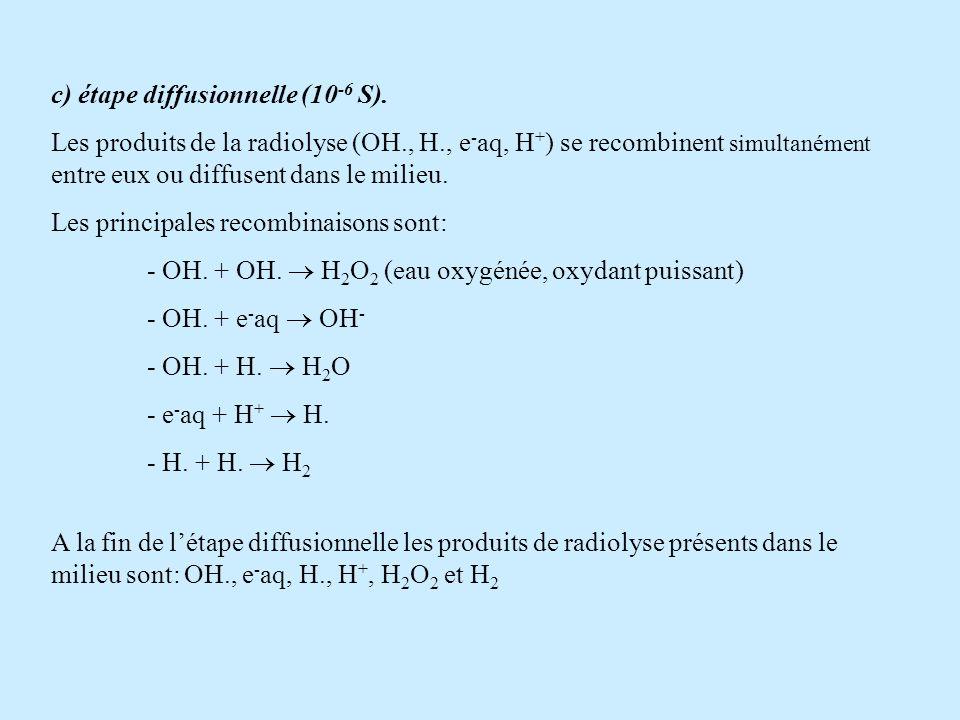 c) étape diffusionnelle (10 -6 S). Les produits de la radiolyse (OH., H., e - aq, H + ) se recombinent simultanément entre eux ou diffusent dans le mi