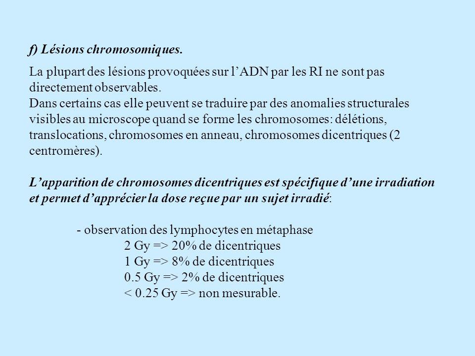 f) Lésions chromosomiques. La plupart des lésions provoquées sur lADN par les RI ne sont pas directement observables. Dans certains cas elle peuvent s