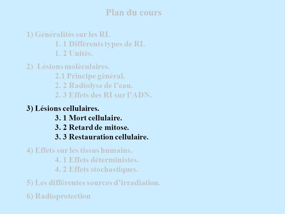 Plan du cours 1) Généralités sur les RI. 1. 1 Différents types de RI. 1. 2 Unités. 2) Lésions moléculaires. 2.1 Principe général. 2. 2 Radiolyse de le