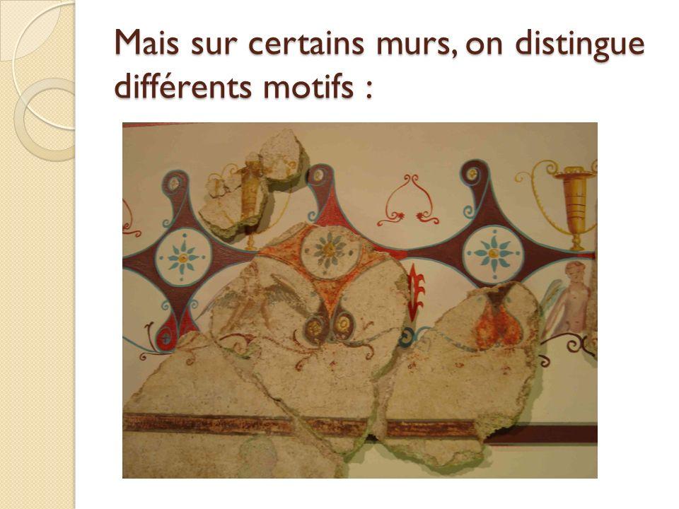 Mais sur certains murs, on distingue différents motifs :