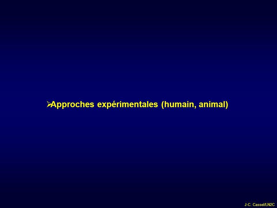 J-C. Cassel/LN2C Approches expérimentales (humain, animal)