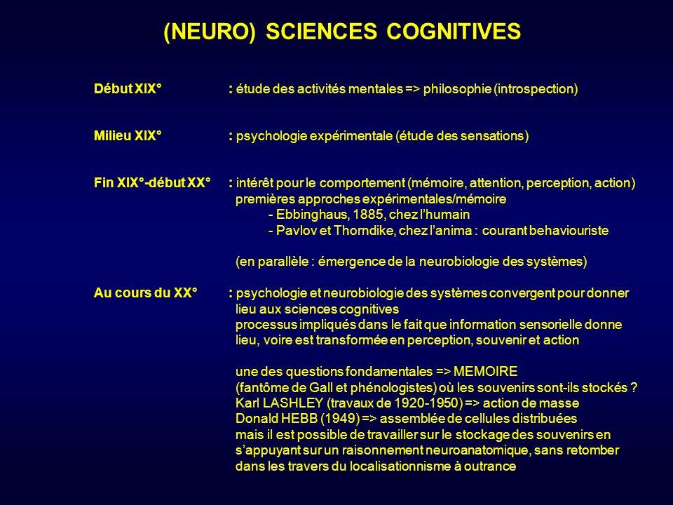 Début XIX°: étude des activités mentales => philosophie (introspection) (NEURO) SCIENCES COGNITIVES Milieu XIX°: psychologie expérimentale (étude des sensations) Fin XIX°-début XX°: intérêt pour le comportement (mémoire, attention, perception, action) premières approches expérimentales/mémoire - Ebbinghaus, 1885, chez lhumain - Pavlov et Thorndike, chez lanima : courant behaviouriste (en parallèle : émergence de la neurobiologie des systèmes) Au cours du XX°: psychologie et neurobiologie des systèmes convergent pour donner lieu aux sciences cognitives processus impliqués dans le fait que information sensorielle donne lieu, voire est transformée en perception, souvenir et action une des questions fondamentales => MEMOIRE (fantôme de Gall et phénologistes) où les souvenirs sont-ils stockés .
