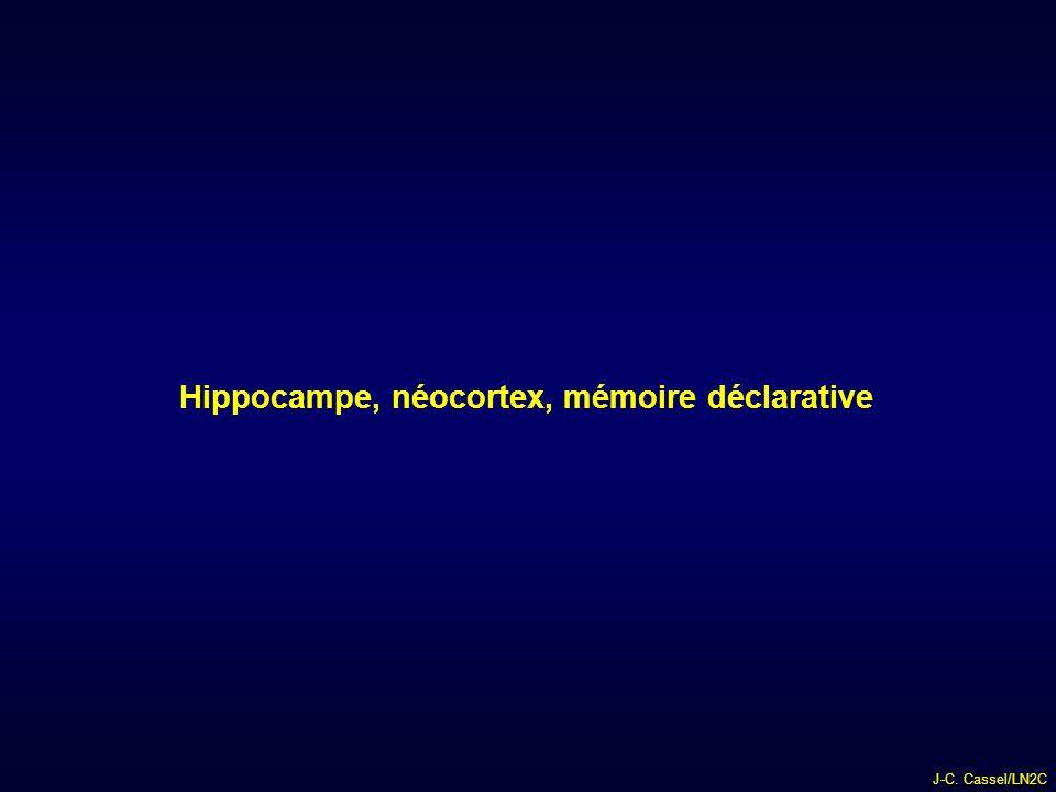 J-C. Cassel/LN2C Hippocampe, néocortex, mémoire déclarative