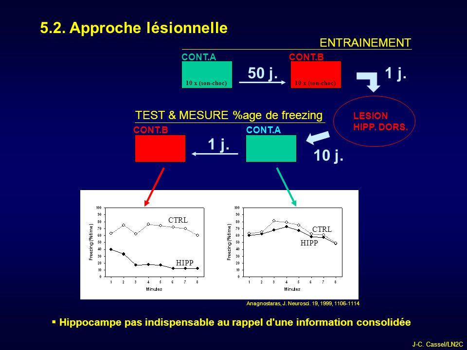 J-C.Cassel/LN2C 5.2. Approche lésionnelle CONT.A CONT.B LESION HIPP.