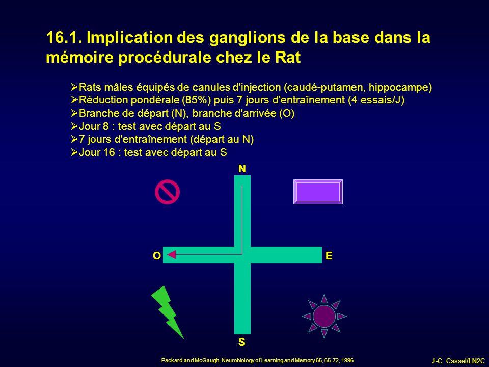 J-C.Cassel/LN2C 16.1.