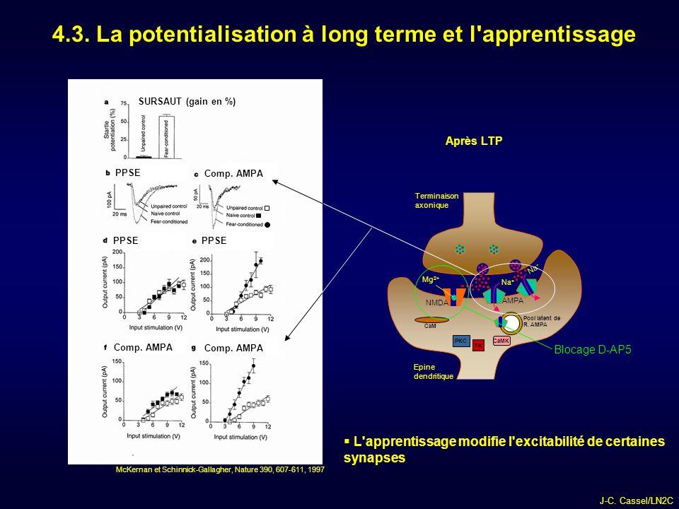 J-C.Cassel/LN2C 4.3. La potentialisation à long terme et l apprentissage PPSE Comp.