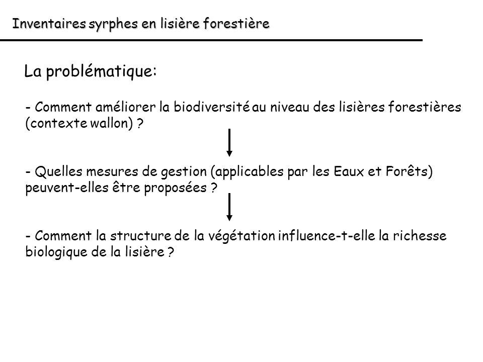 Inventaires syrphes en lisière forestière La problématique: - Comment améliorer la biodiversité au niveau des lisières forestières (contexte wallon) ?