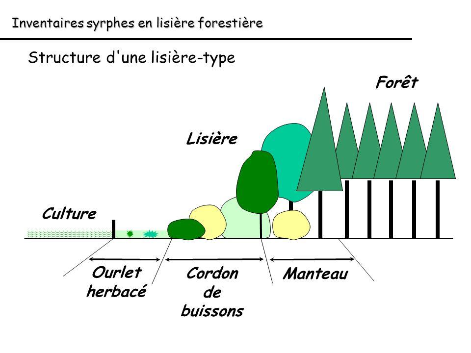 Inventaires syrphes en lisière forestière Structure d'une lisière-type Forêt Culture Lisière Cordon de buissons Ourlet herbacé Manteau