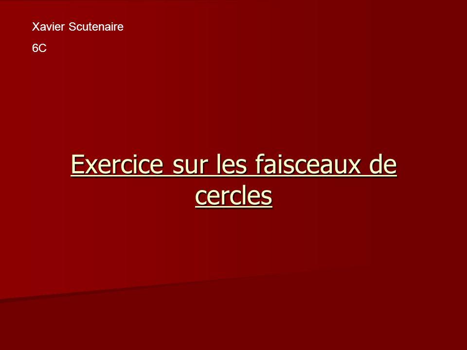Exercice sur les faisceaux de cercles Xavier Scutenaire 6C
