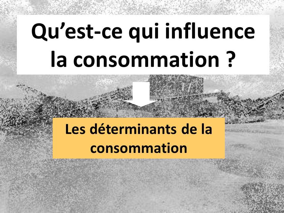 Quest-ce qui influence la consommation ? Les déterminants de la consommation