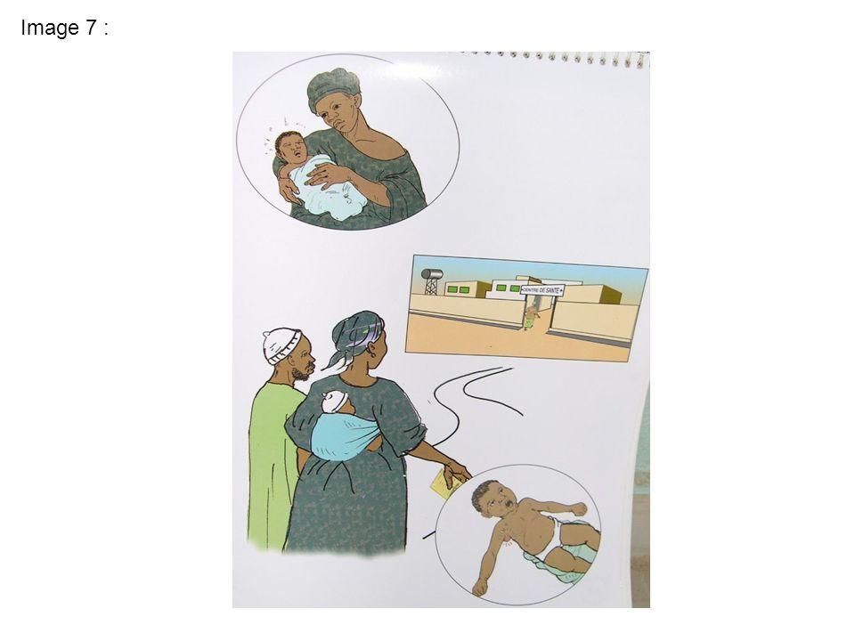 13.Vaccin fièvre jaune. qs :a) que voyez vous sur cette image .