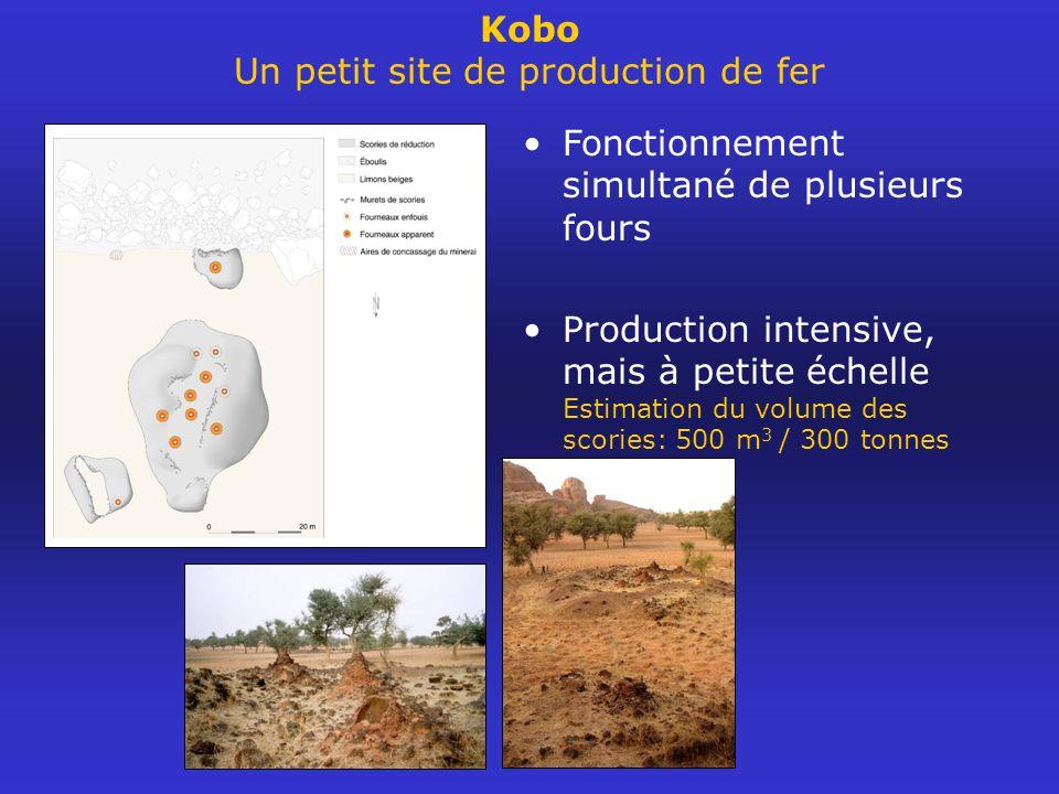 Kobo Un petit site de production de fer Fonctionnement simultané de plusieurs fours Production intensive, mais à petite échelle Estimation du volume d