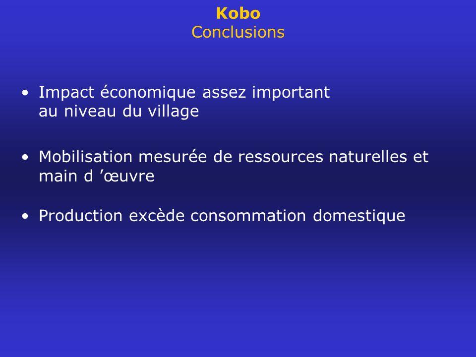 Kobo Conclusions Impact économique assez important au niveau du village Mobilisation mesurée de ressources naturelles et main d œuvre Production excèd