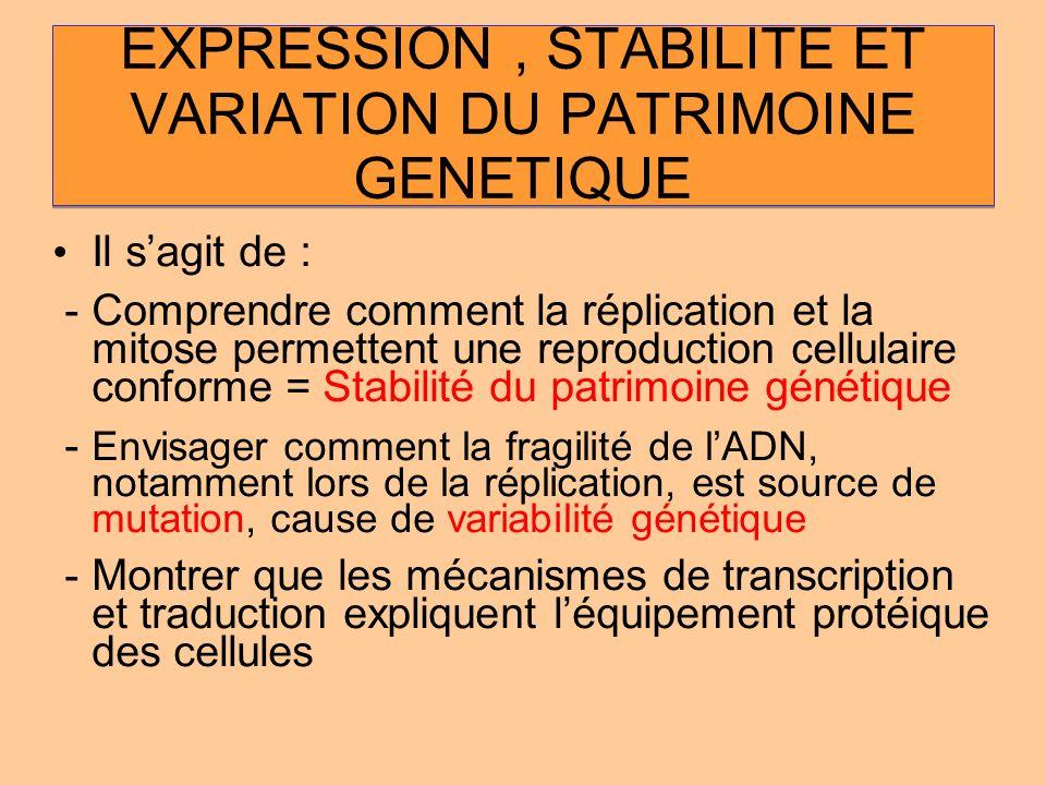 EXPRESSION, STABILITE ET VARIATION DU PATRIMOINE GENETIQUE Il sagit de : - Comprendre comment la réplication et la mitose permettent une reproduction