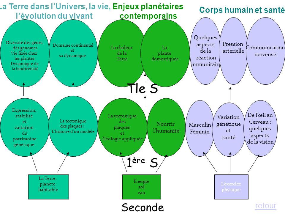 1 ère S La Terre, planète habitable Énergie sol eau Lexercice physique Expression, stabilité et variation du patrimoine génétique La tectonique des pl