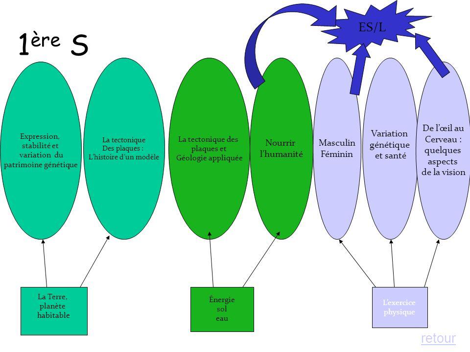 EXPRESSION, STABILITE ET VARIATION DU PATRIMOINE GENETIQUE Il sagit de : - Comprendre comment la réplication et la mitose permettent une reproduction cellulaire conforme = Stabilité du patrimoine génétique - Envisager comment la fragilité de lADN, notamment lors de la réplication, est source de mutation, cause de variabilité génétique - Montrer que les mécanismes de transcription et traduction expliquent léquipement protéique des cellules