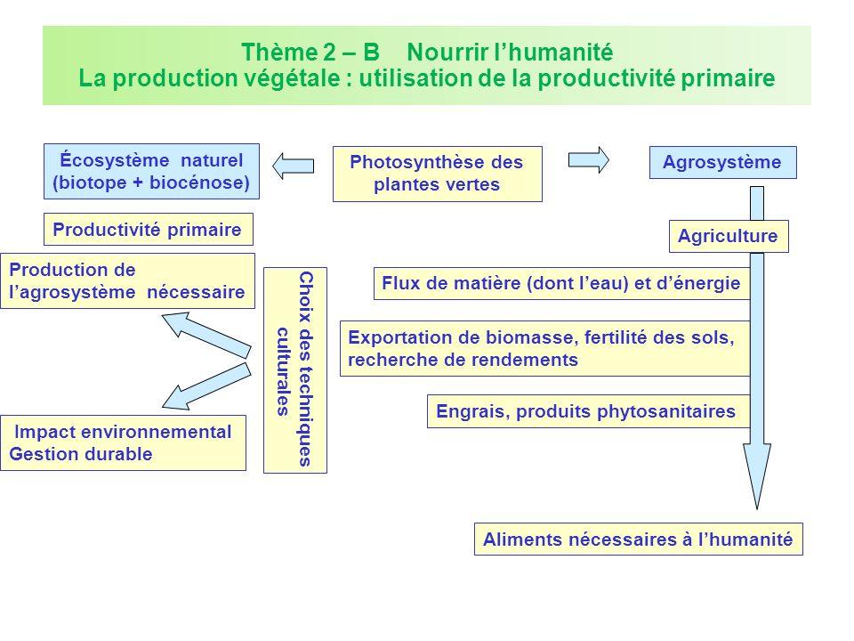 Thème 2 – B Nourrir lhumanité La production végétale : utilisation de la productivité primaire Photosynthèse des plantes vertes Écosystème naturel (bi