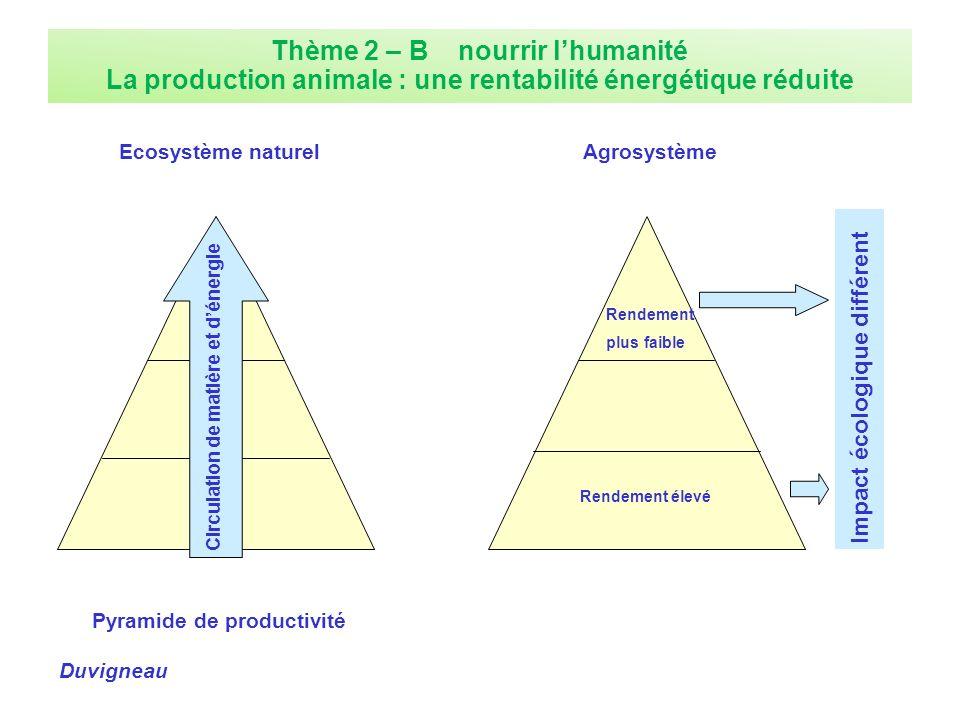 Thème 2 – B nourrir lhumanité La production animale : une rentabilité énergétique réduite Ecosystème naturel Pyramide de productivité Circulation de m