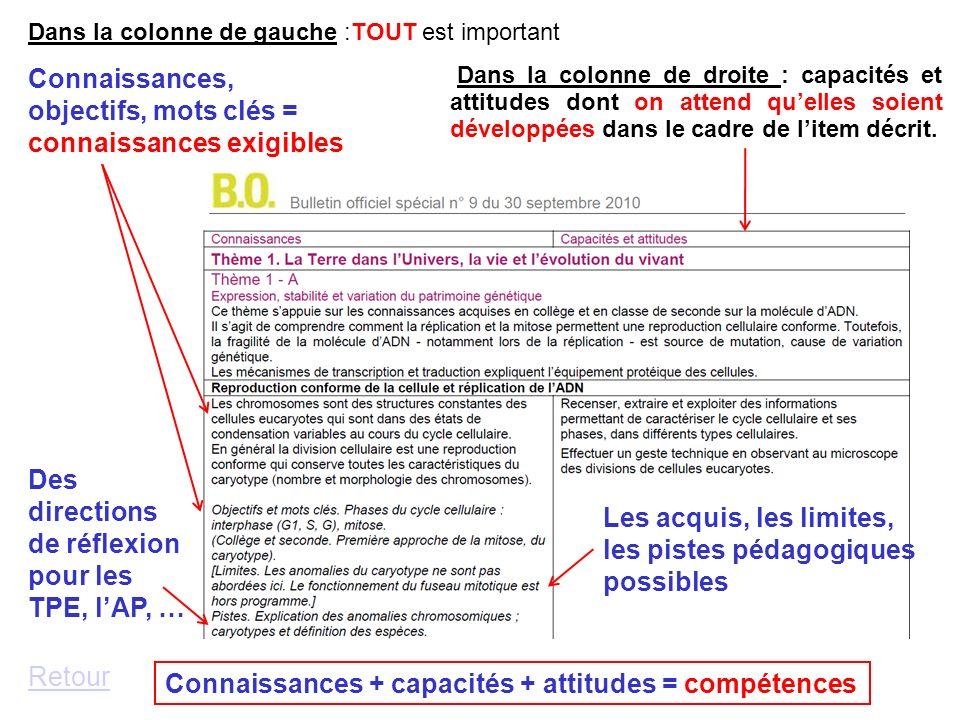 Dans la colonne de droite : capacités et attitudes dont on attend quelles soient développées dans le cadre de litem décrit. Dans la colonne de gauche