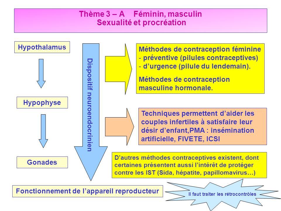 Hypothalamus Hypophyse Gonades Dispositif neuroendocrinien Fonctionnement de lappareil reproducteur Méthodes de contraception féminine - préventive (p