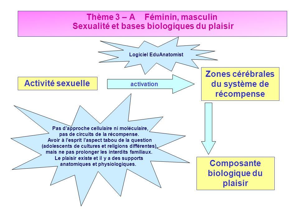 Activité sexuelle Zones cérébrales du système de récompense Composante biologique du plaisir activation Pas dapproche cellulaire ni moléculaire, pas d