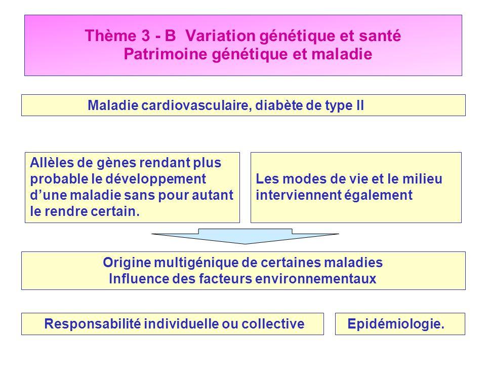 Thème 3 - B Variation génétique et santé Patrimoine génétique et maladie Maladie cardiovasculaire, diabète de type II Allèles de gènes rendant plus pr