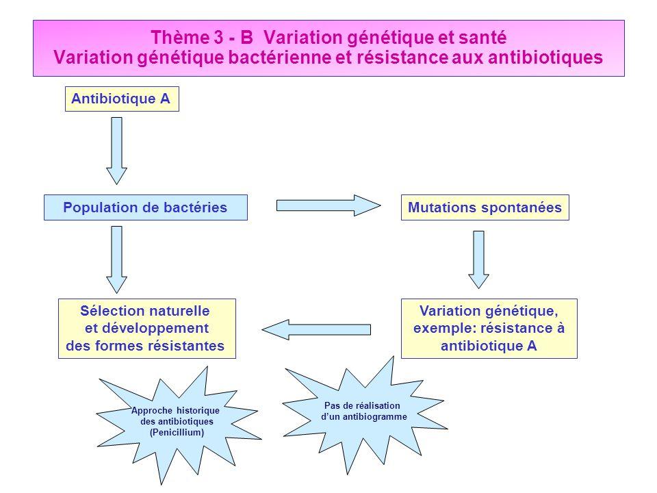 Thème 3 - B Variation génétique et santé Variation génétique bactérienne et résistance aux antibiotiques Mutations spontanées Variation génétique, exe
