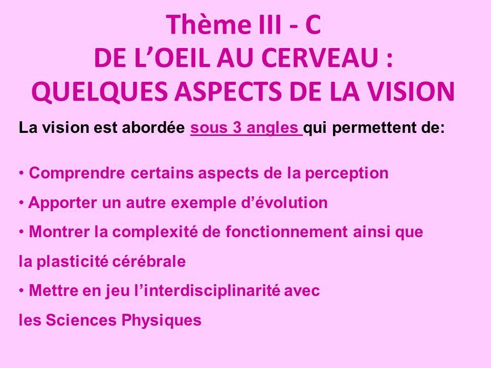 Thème III - C DE LOEIL AU CERVEAU : QUELQUES ASPECTS DE LA VISION La vision est abordée sous 3 angles qui permettent de: Comprendre certains aspects d