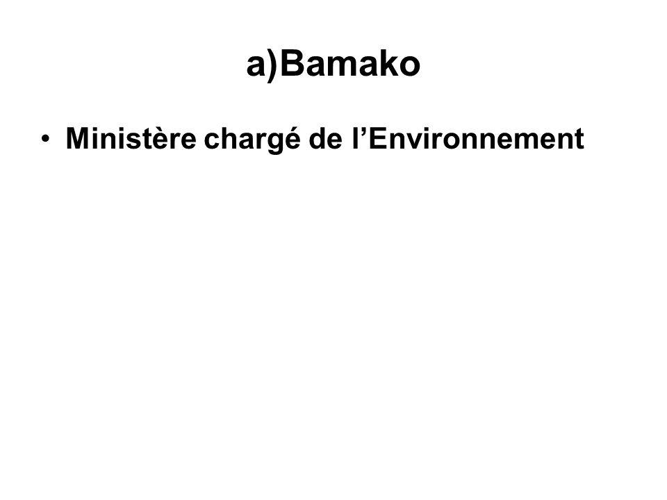 a)Bamako Ministère chargé de lEnvironnement