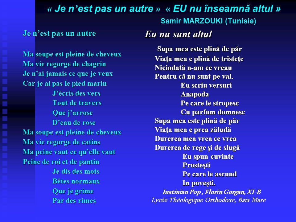 « Je n est pas un autre » « EU nu înseamnă altul » Samir MARZOUKI (Tunisie) Je nest pas un autre Ma soupe est pleine de cheveux Ma vie regorge de chag