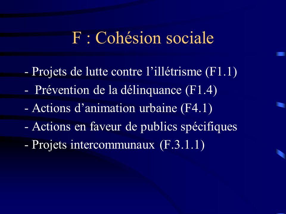 F : Cohésion sociale - Projets de lutte contre lillétrisme (F1.1) - Prévention de la délinquance (F1.4) - Actions danimation urbaine (F4.1) - Actions en faveur de publics spécifiques - Projets intercommunaux (F.3.1.1)