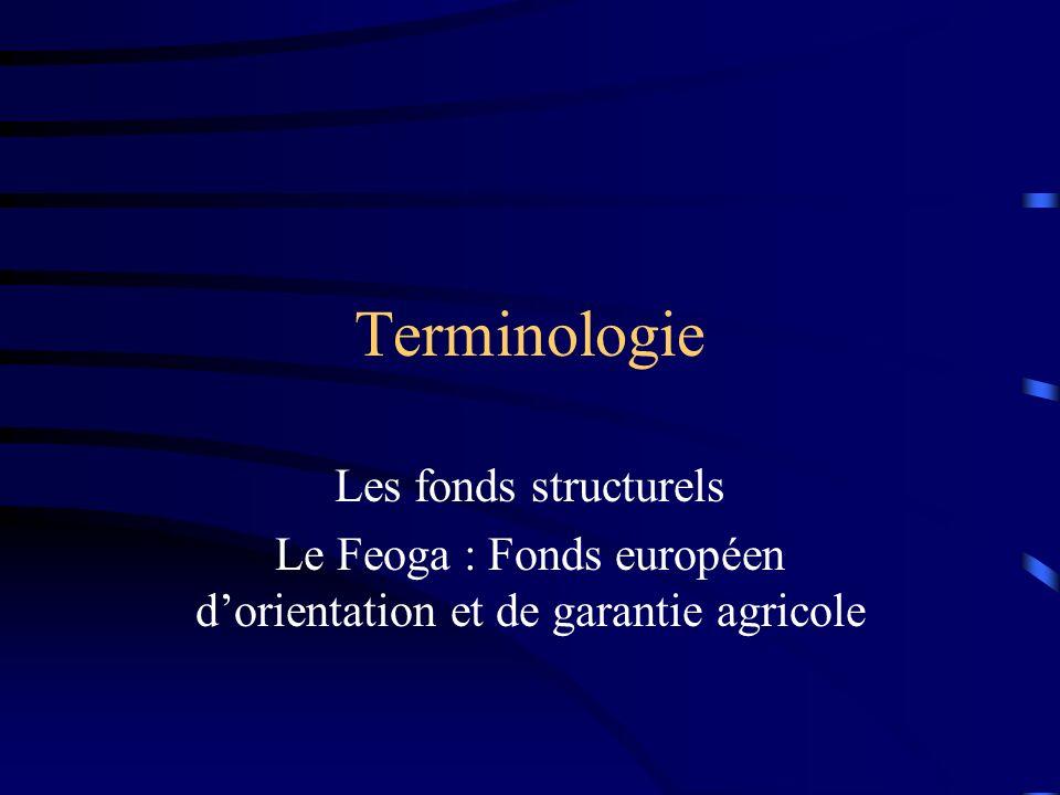 Terminologie Les fonds structurels Le FSE : Fonds social européen