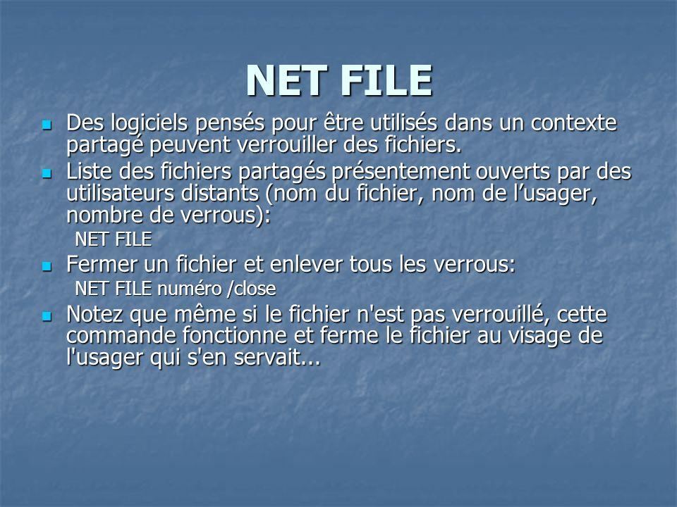 NET FILE Des logiciels pensés pour être utilisés dans un contexte partagé peuvent verrouiller des fichiers. Des logiciels pensés pour être utilisés da
