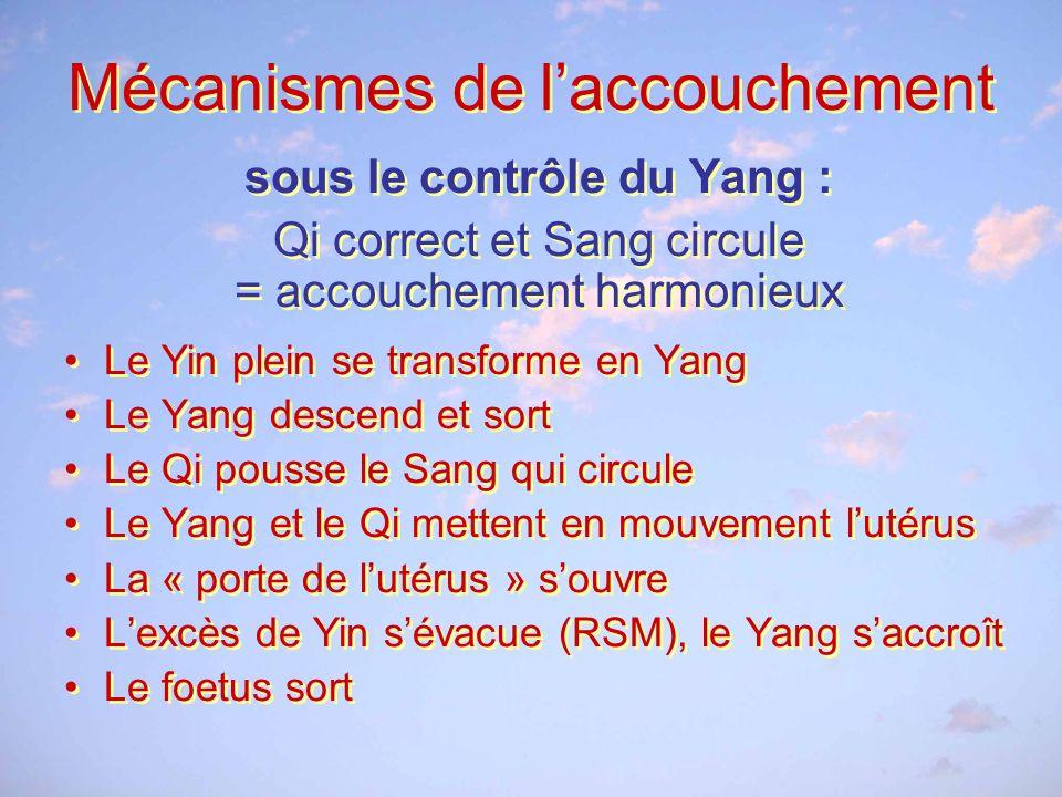 Mécanismes de laccouchement sous le contrôle du Yang : Qi correct et Sang circule = accouchement harmonieux Le Yin plein se transforme en Yang Le Yang descend et sort Le Qi pousse le Sang qui circule Le Yang et le Qi mettent en mouvement lutérus La « porte de lutérus » souvre Lexcès de Yin sévacue (RSM), le Yang saccroît Le foetus sort sous le contrôle du Yang : Qi correct et Sang circule = accouchement harmonieux Le Yin plein se transforme en Yang Le Yang descend et sort Le Qi pousse le Sang qui circule Le Yang et le Qi mettent en mouvement lutérus La « porte de lutérus » souvre Lexcès de Yin sévacue (RSM), le Yang saccroît Le foetus sort