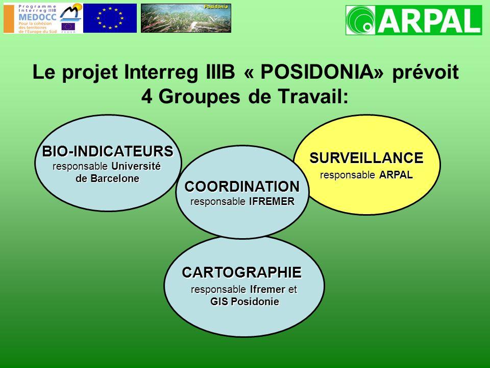 Le projet Interreg IIIB « POSIDONIA» prévoit 4 Groupes de Travail: BIO-INDICATEURS responsable Université de Barcelone SURVEILLANCE responsable ARPAL CARTOGRAPHIE responsable Ifremer et GIS Posidonie GIS Posidonie COORDINATION responsable IFREMER Posidonia