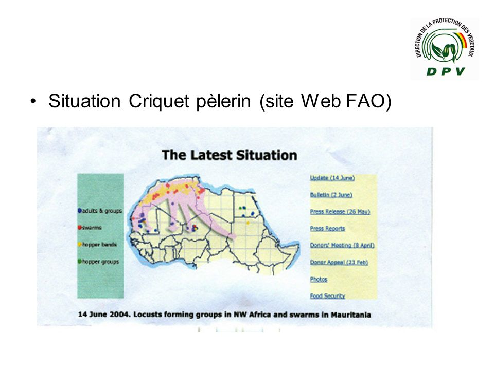 Situation Criquet pèlerin (site Web FAO)