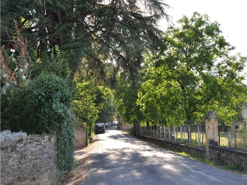 La ville de Saint Léon sur Vézère est une commune Située dans le département de la Dordogne (région Aquitaine ).