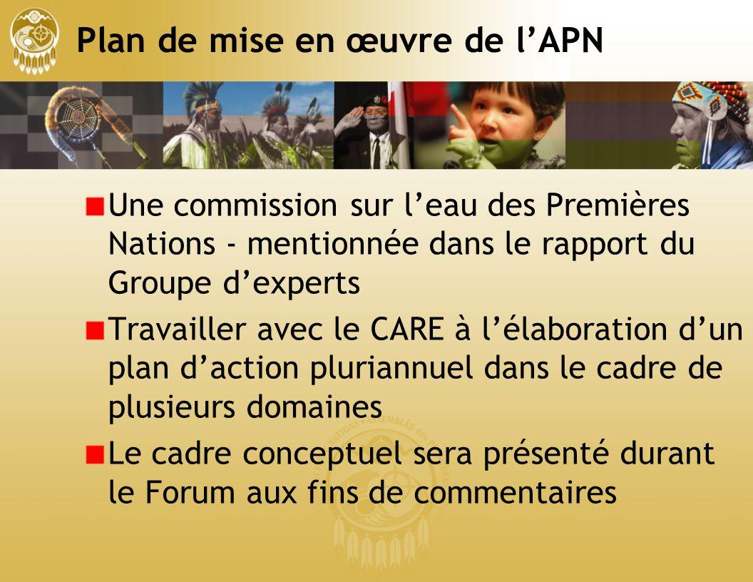 Plan de mise en œuvre de lAPN Une commission sur leau des Premières Nations - mentionnée dans le rapport du Groupe dexperts Travailler avec le CARE à lélaboration dun plan daction pluriannuel dans le cadre de plusieurs domaines Le cadre conceptuel sera présenté durant le Forum aux fins de commentaires