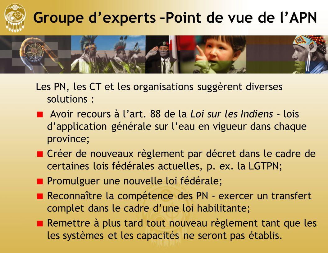 Groupe dexperts –Point de vue de lAPN Les PN, les CT et les organisations suggèrent diverses solutions : Avoir recours à lart.