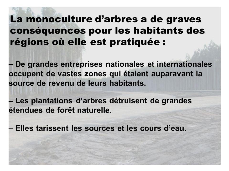 La monoculture darbres a de graves conséquences pour les habitants des régions où elle est pratiquée : – Elles tarissent les sources et les cours deau.