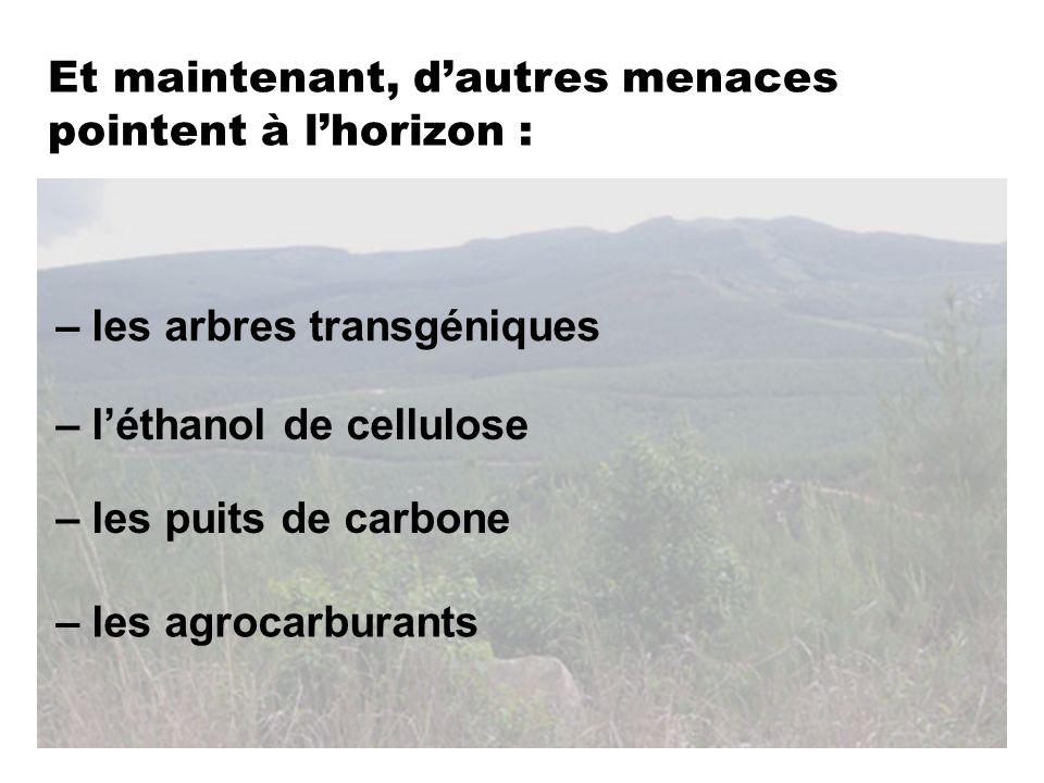 – les agrocarburants – les puits de carbone – léthanol de cellulose – les arbres transgéniques