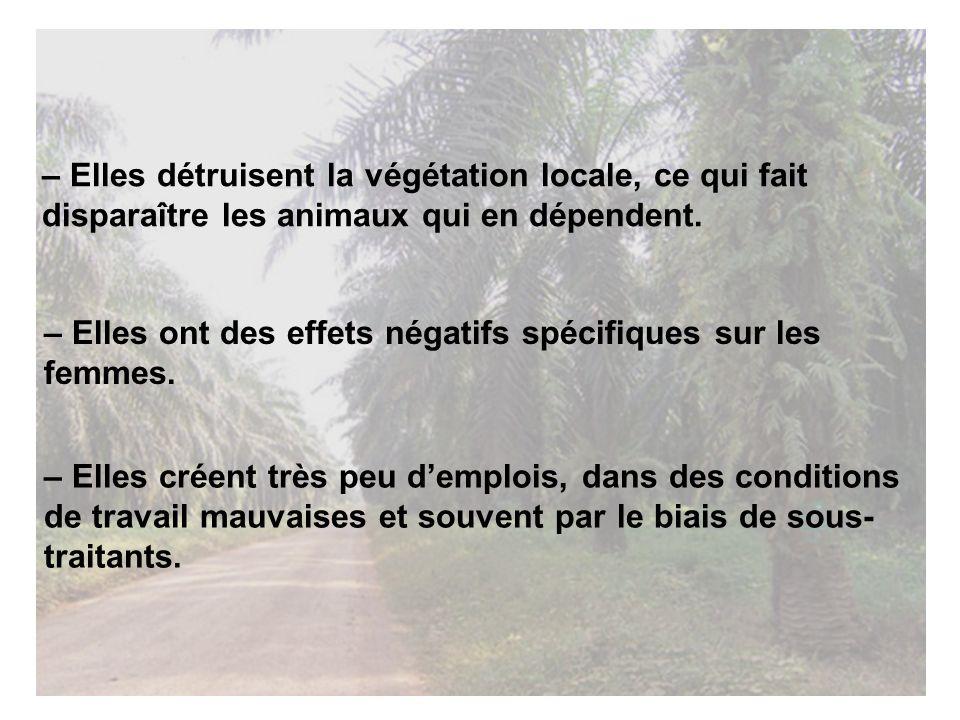 – Elles détruisent la végétation locale, ce qui fait disparaître les animaux qui en dépendent.