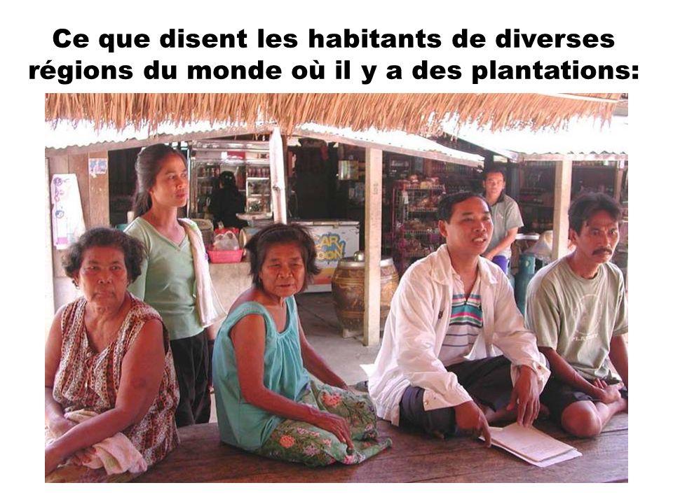 Ce que disent les habitants de diverses régions du monde où il y a des plantations: