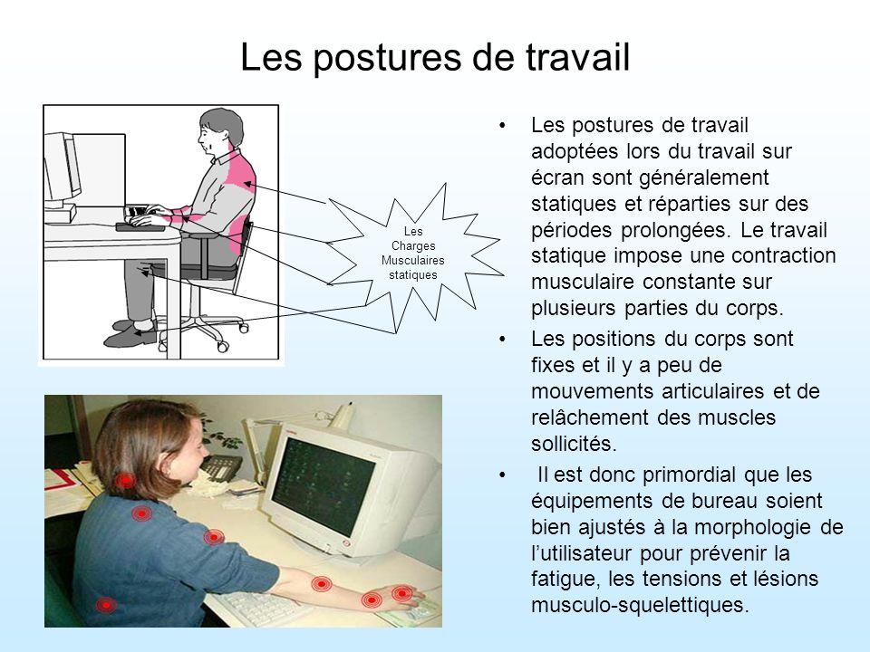 Les postures de travail Les postures de travail adoptées lors du travail sur écran sont généralement statiques et réparties sur des périodes prolongées.