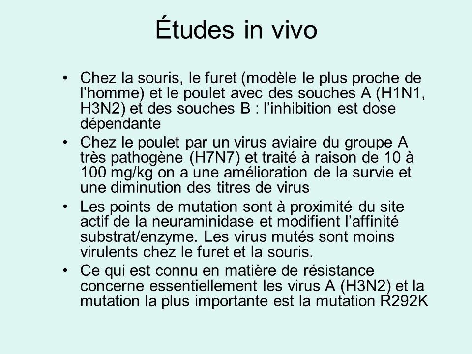 Études in vivo Chez la souris, le furet (modèle le plus proche de lhomme) et le poulet avec des souches A (H1N1, H3N2) et des souches B : linhibition est dose dépendante Chez le poulet par un virus aviaire du groupe A très pathogène (H7N7) et traité à raison de 10 à 100 mg/kg on a une amélioration de la survie et une diminution des titres de virus Les points de mutation sont à proximité du site actif de la neuraminidase et modifient laffinité substrat/enzyme.